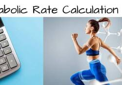 Basal Metabolic Rate Calculation Tool