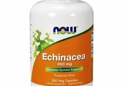 Ranking the best echinacea supplements of 2020